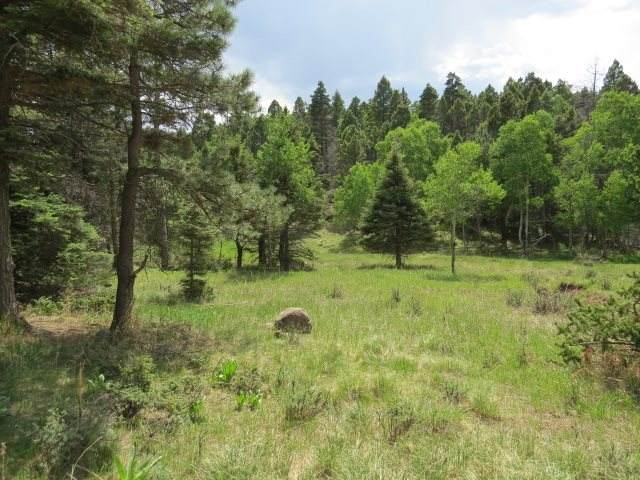 Lot 266 El Camino Real, Angel Fire, NM 87710 (MLS #105190) :: The Chisum Realty Group