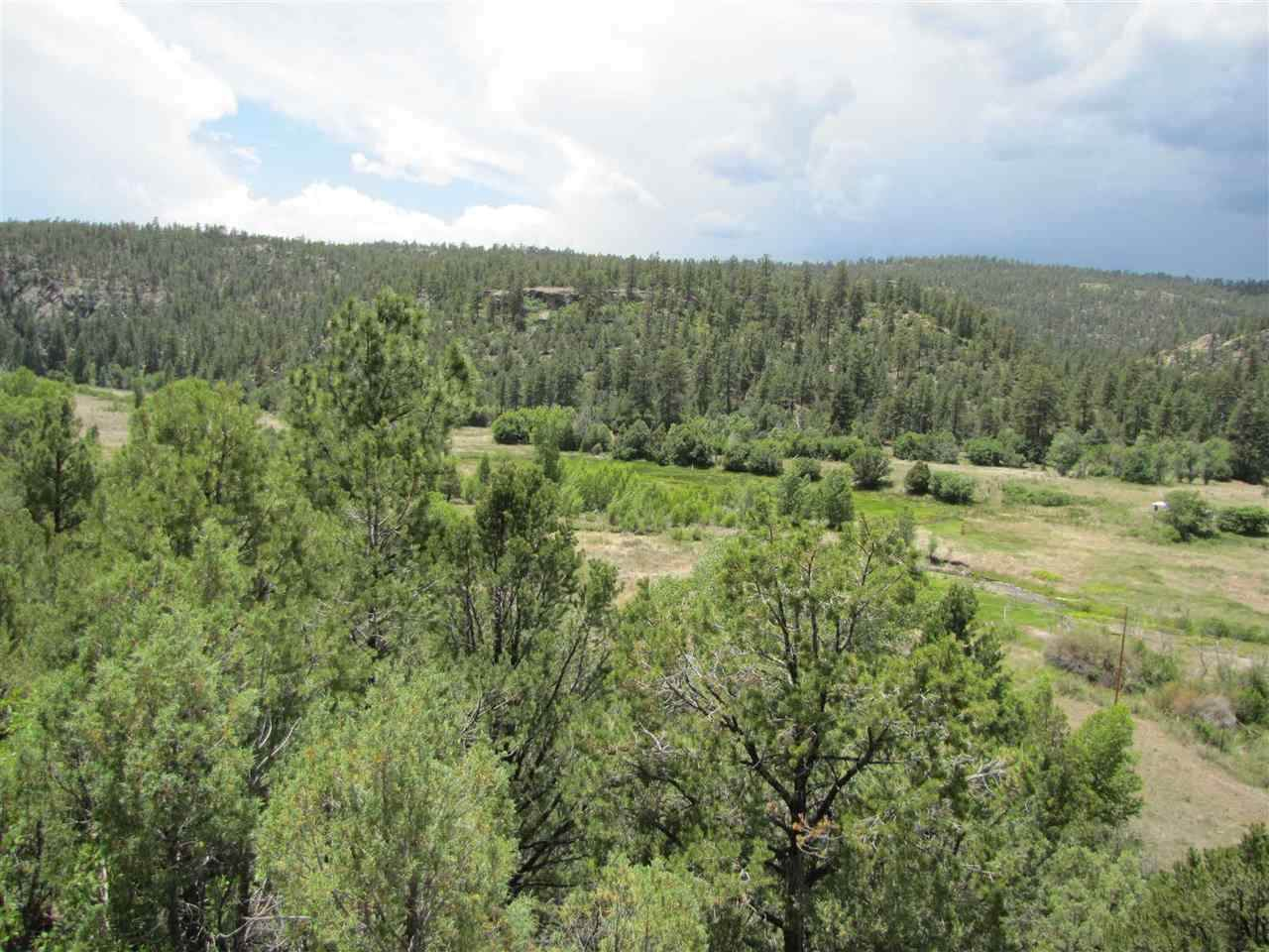 47 Acres Nm 518 - Photo 1