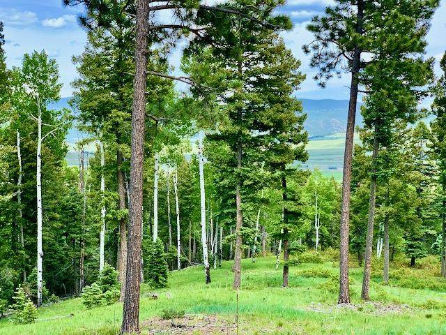 Lot 35 Taos Pines Ranch Rd, Angel Fire, NM 87710 (MLS #105407) :: The Chisum Realty Group