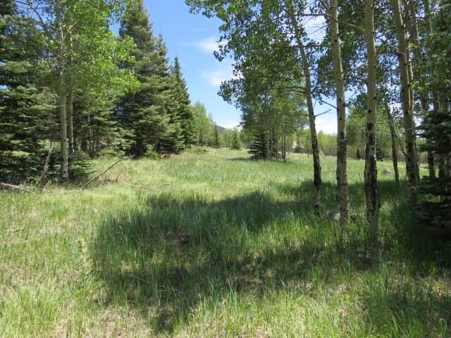 Lot 149 Beaver Loop, Angel Fire, NM 87710 (MLS #105619) :: Page Sullivan Group