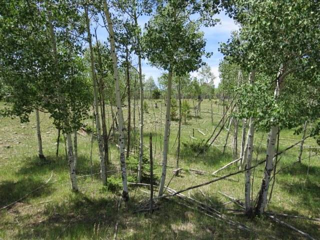 Lot 150 Beaver Loop, Angel Fire, NM 87710 (MLS #105620) :: Page Sullivan Group