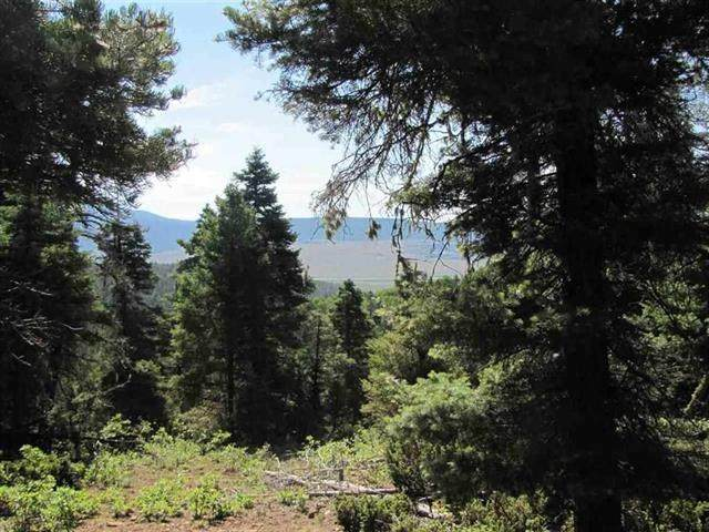 Lot 93 Taos Pines Ranch Rd, Angel Fire, NM 87710 (MLS #105642) :: The Chisum Realty Group