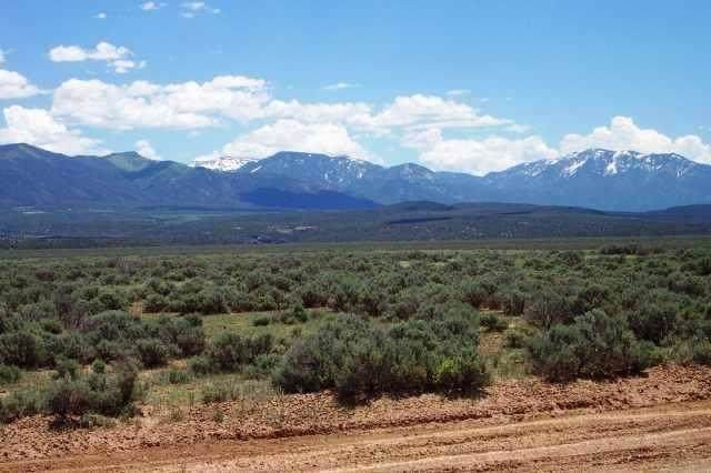Lot 2 County Road 121, Arroyo Hondo, NM 87513 (MLS #105691) :: The Chisum Realty Group