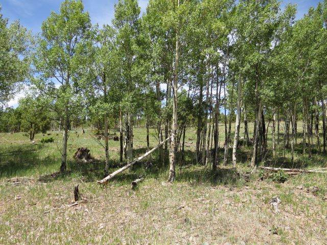 Lot 152 Beaver Loop, Angel Fire, NM 87710 (MLS #105733) :: Page Sullivan Group