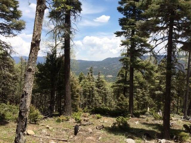 98 Zia Rd, Angel Fire, NM 87710 (MLS #105780) :: The Chisum Realty Group