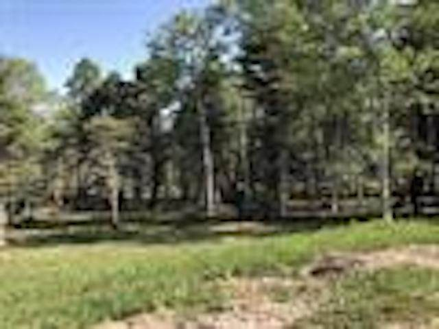 Lot 399 Isleta Terrace, Angel Fire, NM 87710 (MLS #105809) :: Page Sullivan Group
