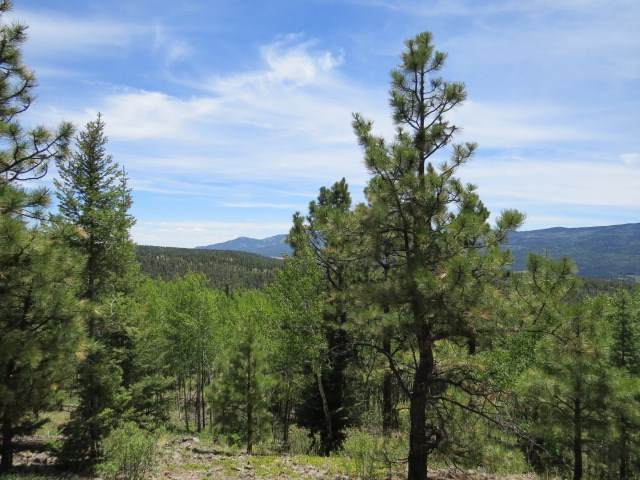 126 Beaver Loop Lot 126, Angel Fire, NM 87710 (MLS #105825) :: Page Sullivan Group