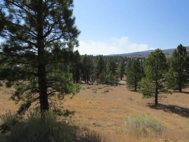 tbd Torrey Pines Lot 1263, Angel Fire, NM 87710 (MLS #106031) :: Page Sullivan Group