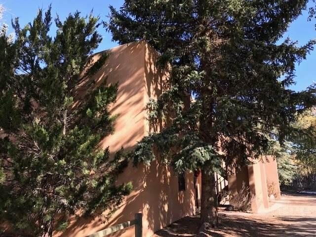 405 Camino De La Placita  5 B, Taos, NM 87571 (MLS #106045) :: Page Sullivan Group