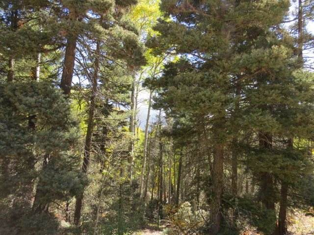 TBD Brazos Drive Lot 30, Angel Fire, NM 87710 (MLS #106069) :: Page Sullivan Group