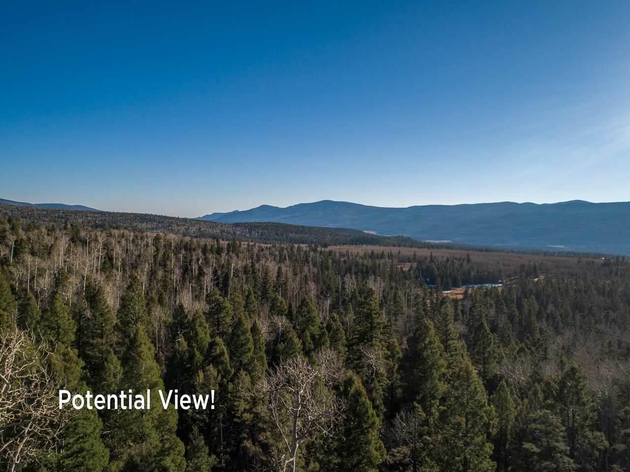 1142A Panorama Way - Photo 1