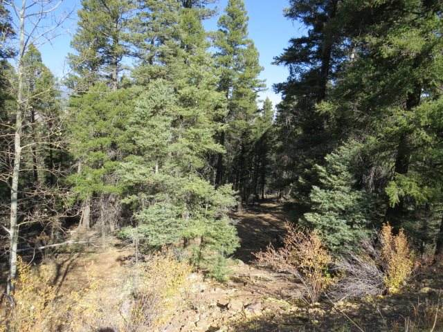 TBD Valley Road Lot 126, Angel Fire, NM 87710 (MLS #106102) :: Page Sullivan Group
