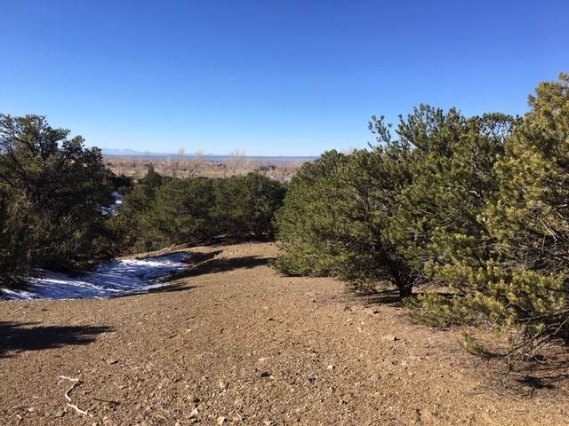 Pinon Trail - Photo 1