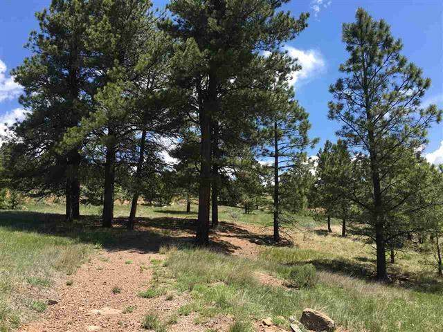Lot 1206 Colonial Trl, Angel Fire, NM 87710 (MLS #106225) :: Page Sullivan Group