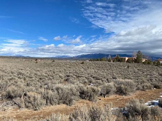 00 Coyote Loop, Arroyo Hondo, NM 87513 (MLS #106364) :: Page Sullivan Group