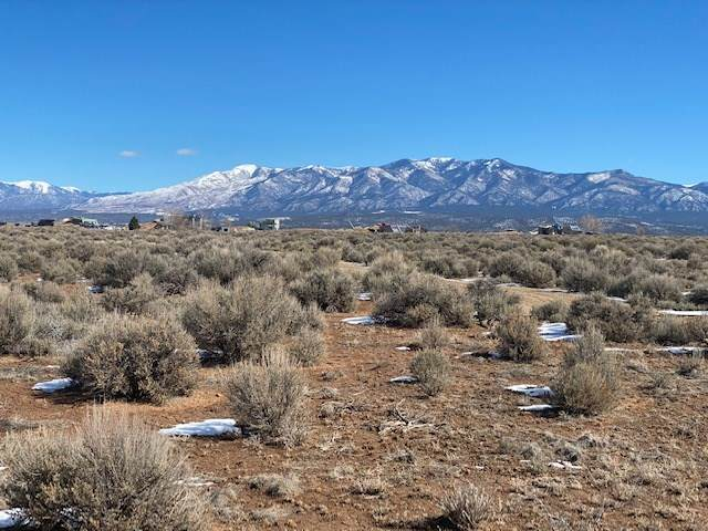 14 Fork Road, Tres Piedras, NM 87577 (MLS #106477) :: Page Sullivan Group