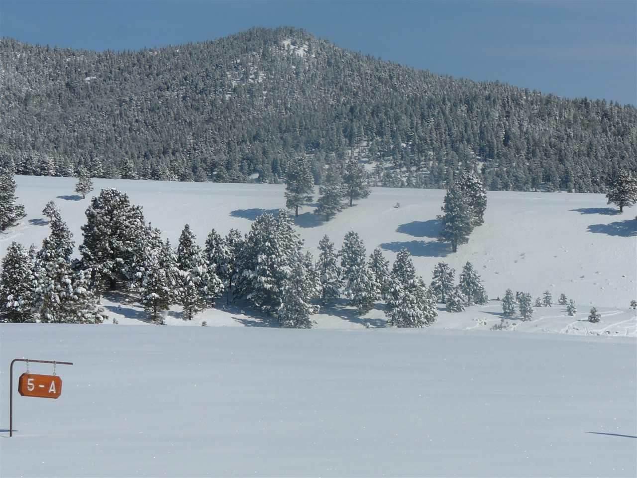 Lot 11 Ash Mountain Subdivision - Photo 1