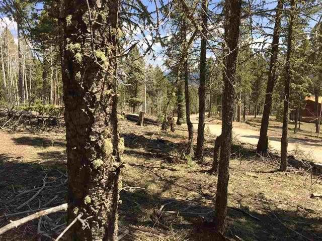 Lot 111A Calle De Los Indios, Angel Fire, NM 87710 (MLS #106594) :: Angel Fire Real Estate & Land Co.