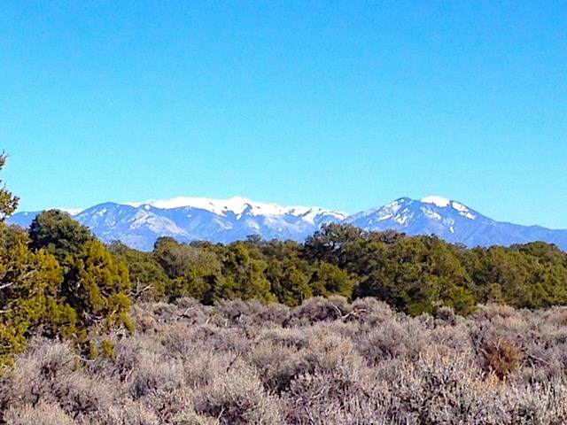 40 Acres Highway 285, Tres Piedras, NM 87577 (MLS #106631) :: Page Sullivan Group