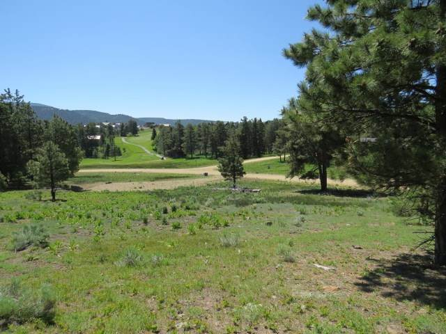 tbd Colonial Trail Lot 1253, Angel Fire, NM 87710 (MLS #106648) :: Angel Fire Real Estate & Land Co.