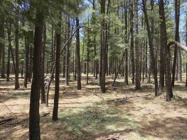 tbd San Juan Drive Lot 121, Angel Fire, NM 87710 (MLS #106649) :: Angel Fire Real Estate & Land Co.