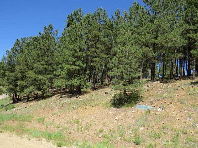 TBD Woodlands Drive Lot 1085, Angel Fire, NM 87710 (MLS #106658) :: Angel Fire Real Estate & Land Co.