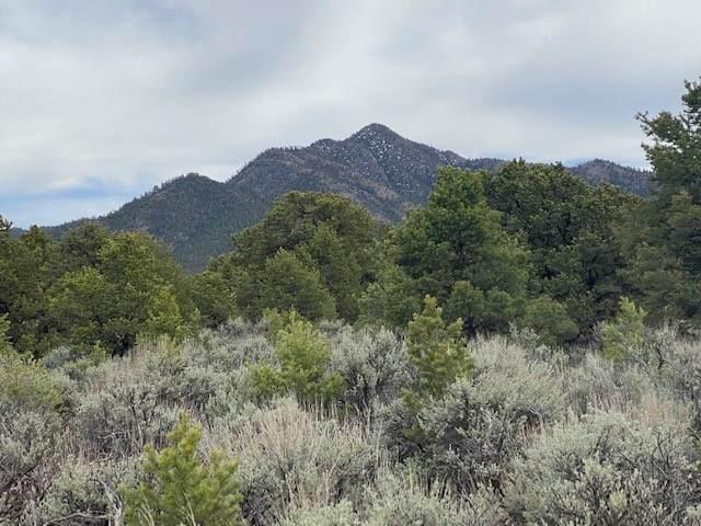 0 Estancias Atalaya, Taos, NM 87571 (MLS #106811) :: Page Sullivan Group