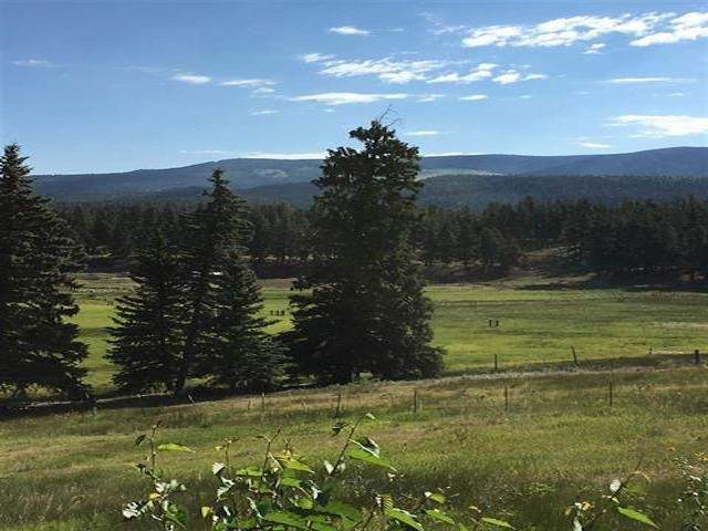 Lot 13 Black Lake, Angel Fire, NM 87710 (MLS #106849) :: Angel Fire Real Estate & Land Co.