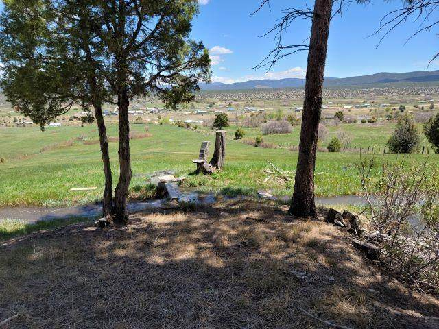 TBD Las Trampas Rd, Llano San Juan, NM 87543 (MLS #106905) :: Angel Fire Real Estate & Land Co.