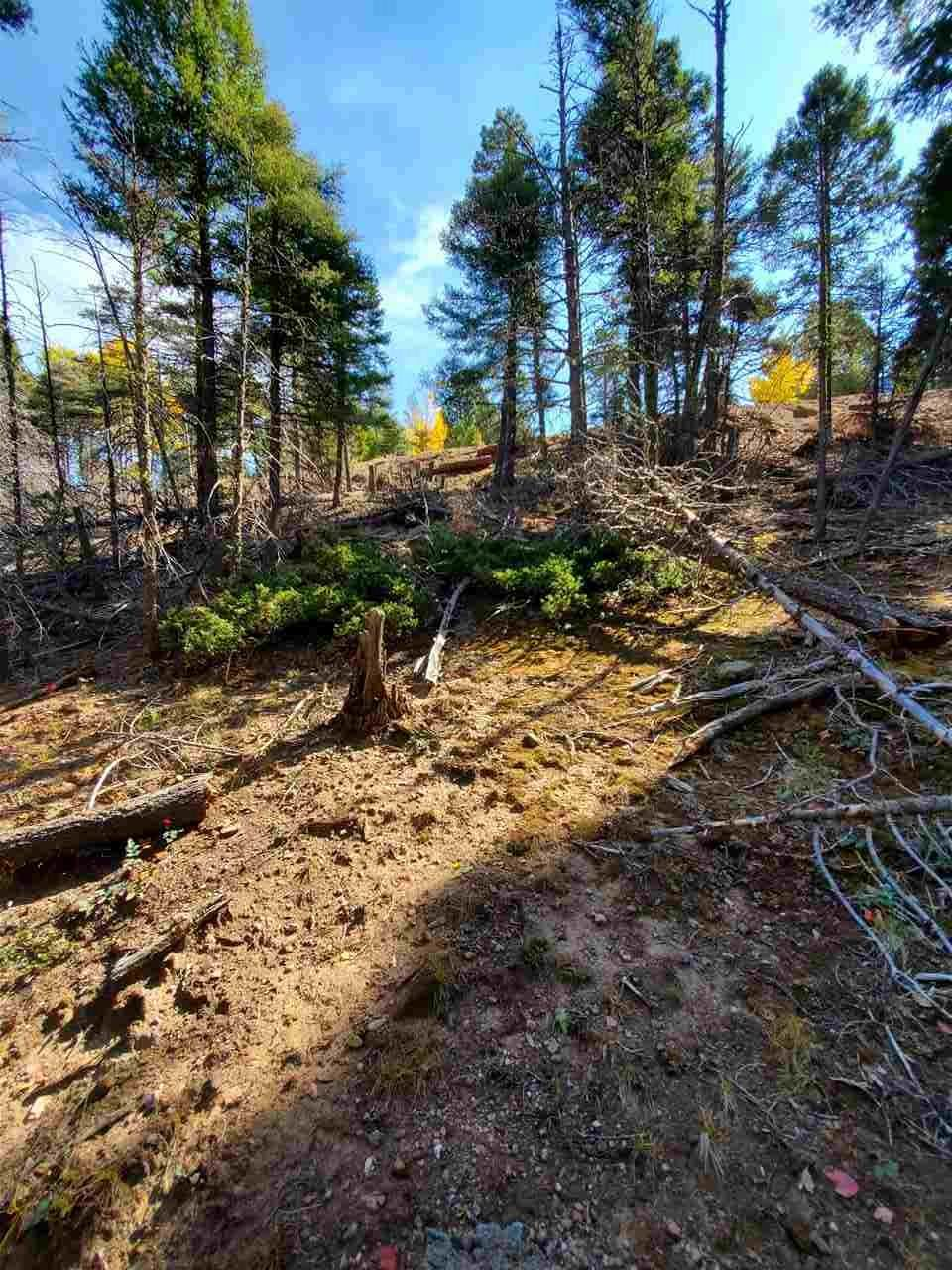 Lot 318 South Vail Overlook - Photo 1