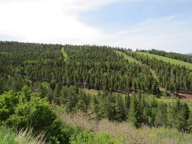 TBD Valley Road Amended Lot 128, Angel Fire, NM 87710 (MLS #106981) :: Chisum Realty Group