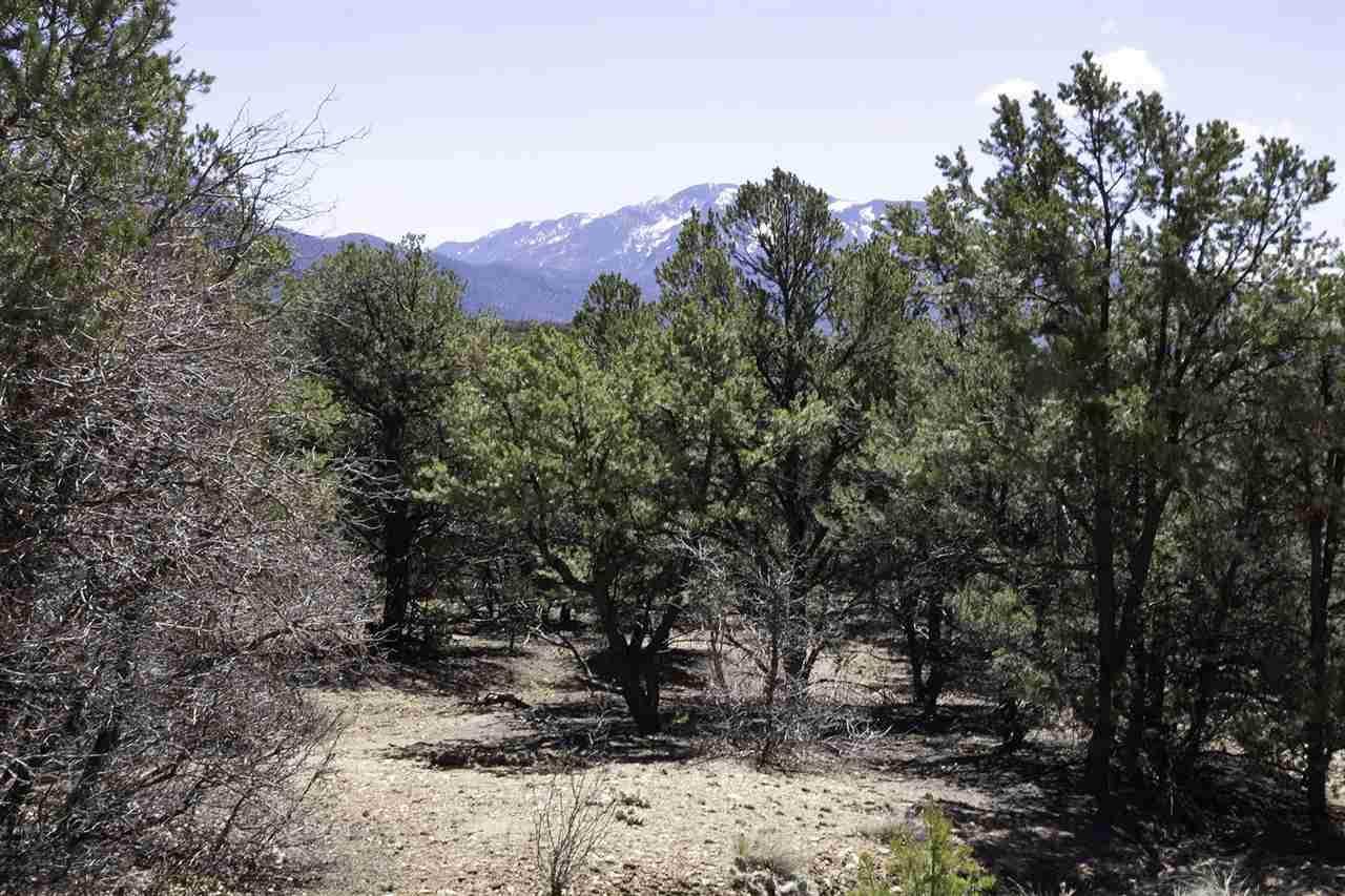 Lot 14 Deer Mesa - Photo 1