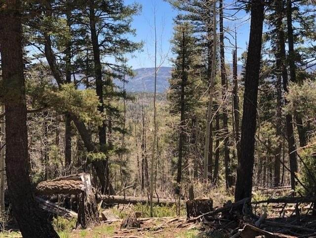 1416 El Camino Real, Angel Fire, NM 87710 (MLS #107105) :: Berkshire Hathaway Home Services