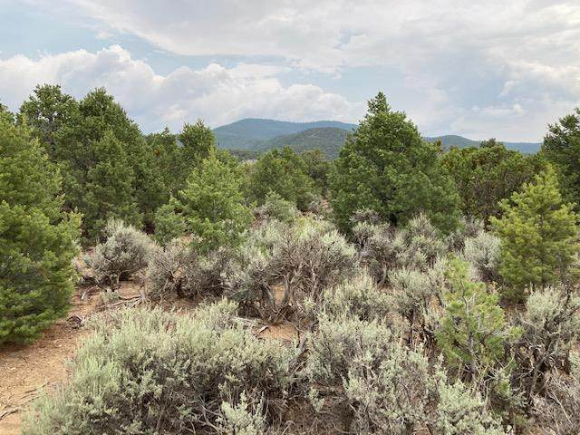 Tract 2 Upper Weimer, Taos, NM 87571 (MLS #107416) :: Chisum Realty Group
