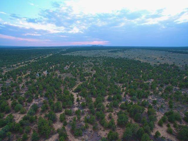 00 Powerline Rd, Carson, NM 87517 (MLS #107685) :: Angel Fire Real Estate & Land Co.