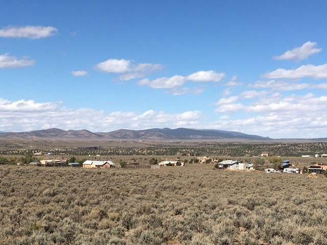 Tr B Rabbit Ridge Rd, Arroyo Hondo, NM 87513 (MLS #107921) :: Angel Fire Real Estate & Land Co.