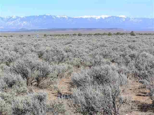 1 MI SOUTH Of Tp;E Side Hwy 285, Tres Piedras, NM 87577 (MLS #84284) :: The Chisum Realty Group