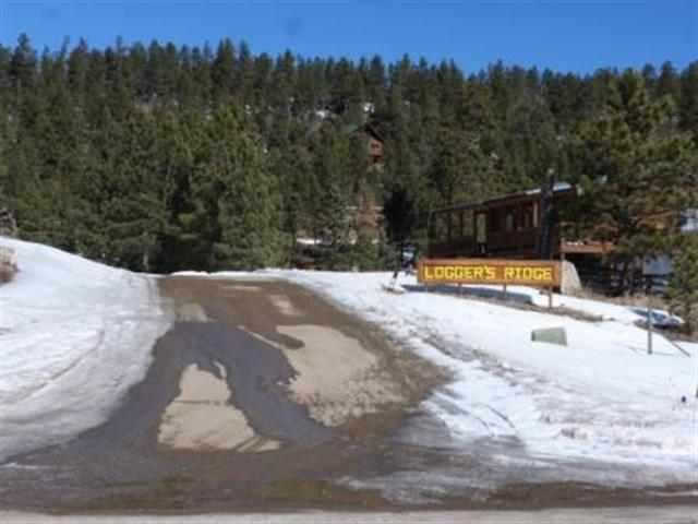 Lot 20 N Phase 2, Off Loggers Mill Way, Angel Fire, NM 87710 (MLS #86225) :: Page Sullivan Group | Coldwell Banker Lota Realty