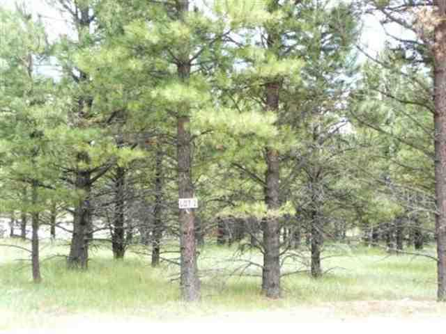 Lot 2 Pine Ridge, Angel Fire, NM 87710 (MLS #86631) :: Page Sullivan Group | Coldwell Banker Mountain Properties