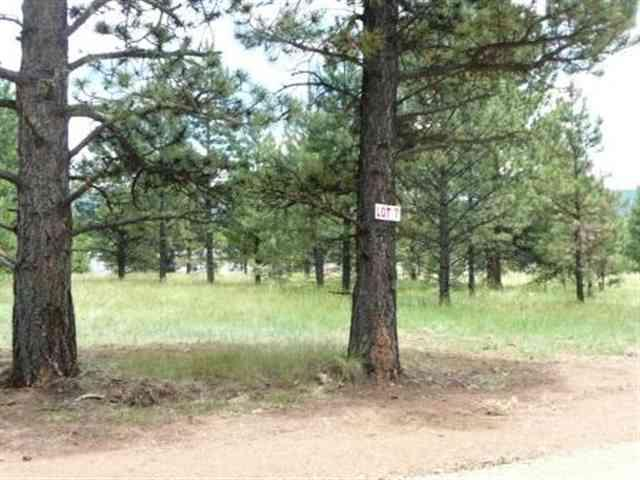 Lot 7 Pine Ridge, Angel Fire, NM 87710 (MLS #86636) :: Page Sullivan Group | Coldwell Banker Lota Realty