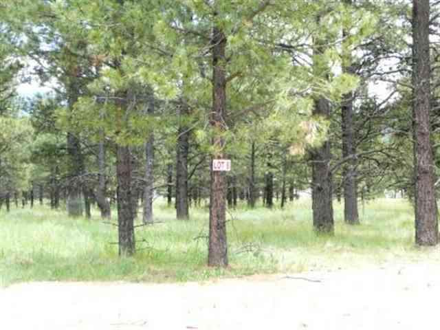 Lot 8 Pine Ridge, Angel Fire, NM 87710 (MLS #86637) :: Page Sullivan Group | Coldwell Banker Lota Realty