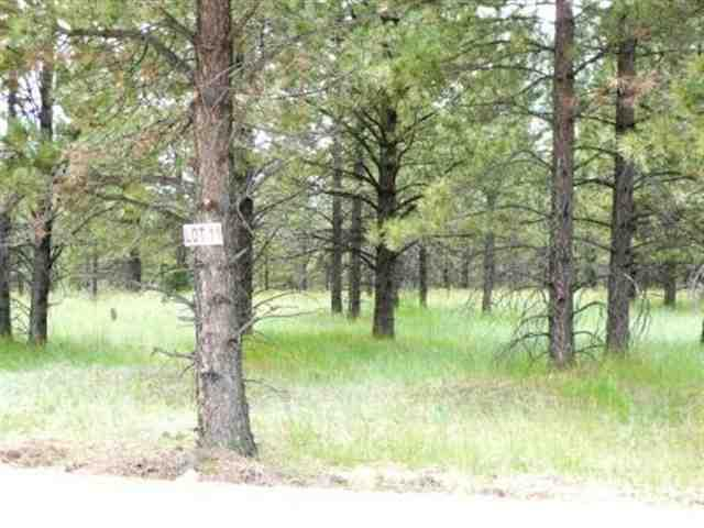 Lot 11 Pine Ridge, Angel Fire, NM 87710 (MLS #86641) :: Page Sullivan Group | Coldwell Banker Mountain Properties