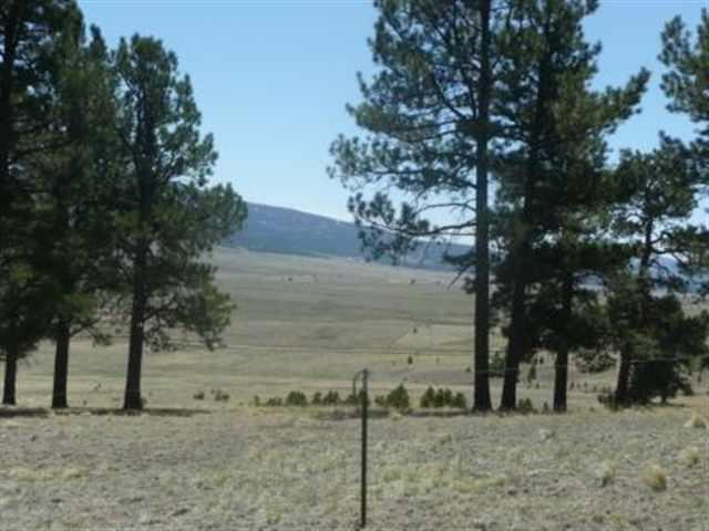 West Slope Acres, Lot 16, Angel Fire, NM 87710 (MLS #90695) :: Angel Fire Real Estate & Land Co.