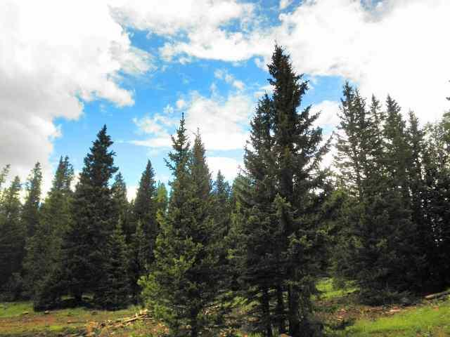 13 Happy Way, Angel Fire, NM 87710 (MLS #92082) :: Page Sullivan Group | Coldwell Banker Lota Realty
