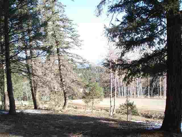 Lot 19 St Andrews Way, Angel Fire, NM 87710 (MLS #93290) :: Page Sullivan Group | Coldwell Banker Mountain Properties