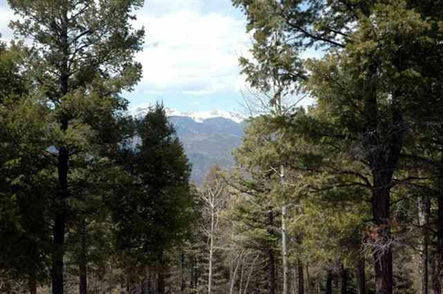 Lot 324 South Vail Overlook, Angel Fire, NM 87710 (MLS #93342) :: Page Sullivan Group | Coldwell Banker Mountain Properties