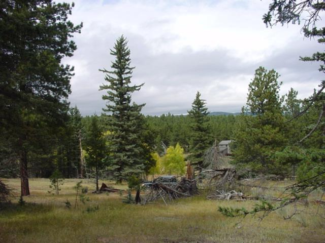 32&33 San Andres Terrace, Angel Fire, NM 87710 (MLS #95564) :: Page Sullivan Group | Coldwell Banker Mountain Properties