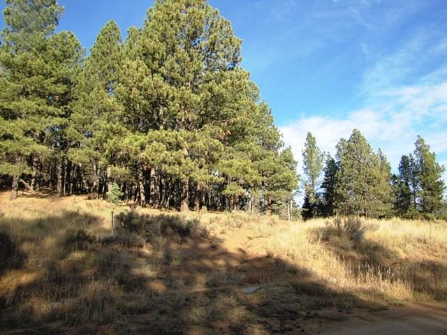 Lot 27 A&B Pam Coleman Drive, Angel Fire, NM 87710 (MLS #96871) :: Page Sullivan Group | Coldwell Banker Lota Realty