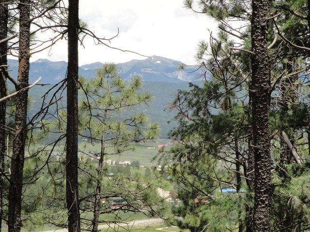 Lot 41 Vail Ave, Angel Fire, NM 87710 (MLS #97204) :: Page Sullivan Group | Coldwell Banker Lota Realty