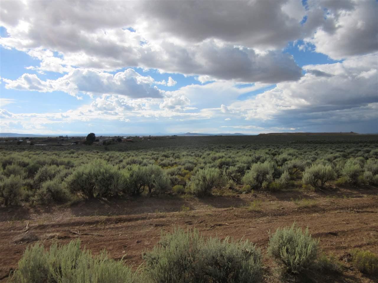 Camino Coyote - Photo 1